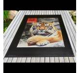3' x 5' SuperScrape Impressions Indoor & Outdoor Floor Mat